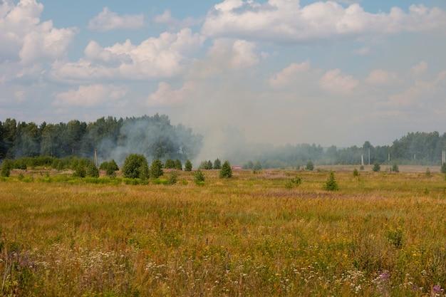 Un incendio boschivo in un campo. disastro naturale