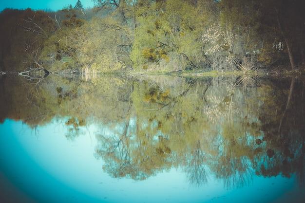Foresta riflessa nel fiume in primavera