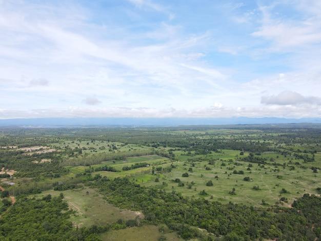 Silvicoltura con volumi in calo. tiro alto angolo di droni in thailandia