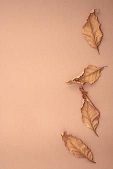 Quattro foglie d'autunno sono su uno sfondo di carta marrone, monocromatico, vista dall'alto, piatto.