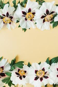 Bordo del frame di fiori di peonie bianche sulla superficie gialla