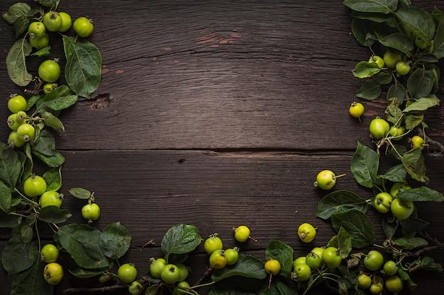 Cornice per il design da mele selvatiche. cornice per il design.