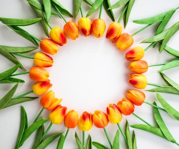 Cornice di fiori con copia spazio su sfondo bianco