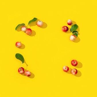 Cornice da piccole mele rosse mature e foglie verdi