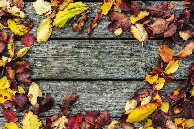 Cornice fatta di foglie secche autunnali su vecchio fondo d'annata di legno scuro, bordo del granaio con muschio. composizione di sfondo autunnale. caduta, copia spazio, laico, vista dall'alto.