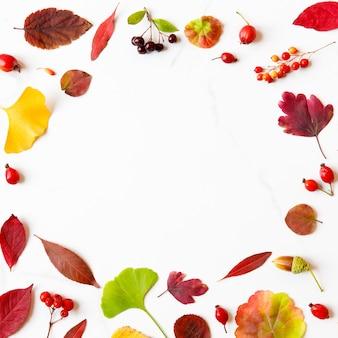 Cornice fatta di foglie d'autunno - betulla, acero giapponese, ginkgo, geranio, bacche di crespino, ghiande, sorbo, biancospino su sfondo di marmo bianco