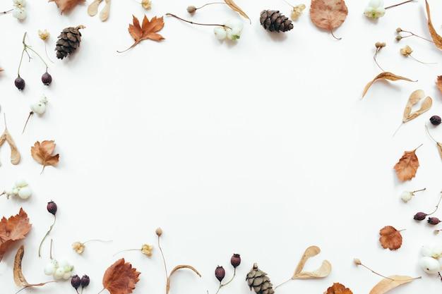 Cornice fatta di foglie secche di autunno su sfondo bianco. autunno, concetto di caduta. appartamento laico, vista dall'alto, copia dello spazio