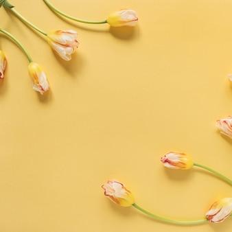 Cornice fatta di fiori di tulipano giallo su giallo