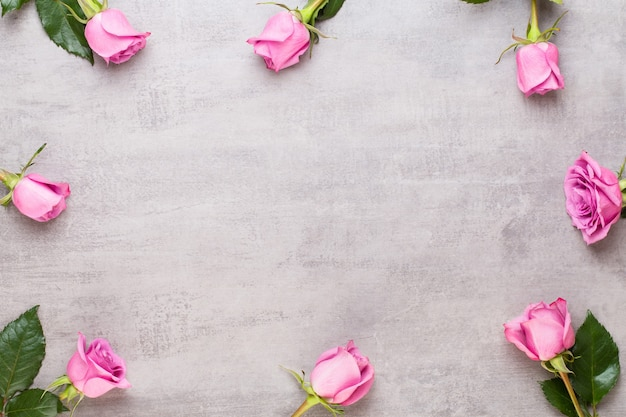 Cornice di rose rosa su sfondo grigio. vista piana laico e dall'alto