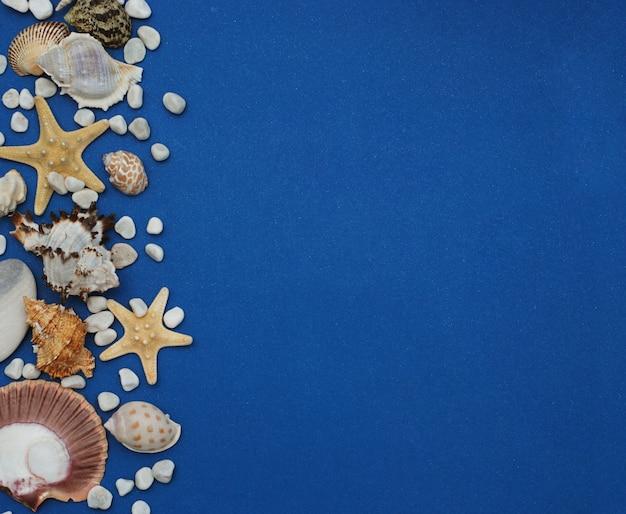 Cornice di conchiglie su sfondo blu. seashells e stelle marine su priorità bassa blu.