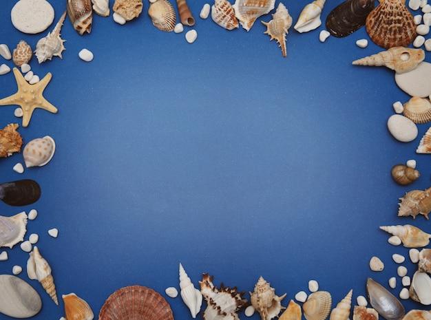 Cornice di conchiglie su sfondo blu. seashells e stelle marine su una priorità bassa blu scuro.
