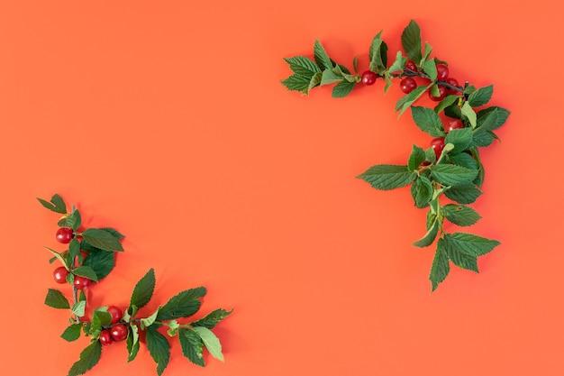 La cornice di ramoscelli con foglie e ciliegie su sfondo rosso il posto vuoto con spazio per le copie