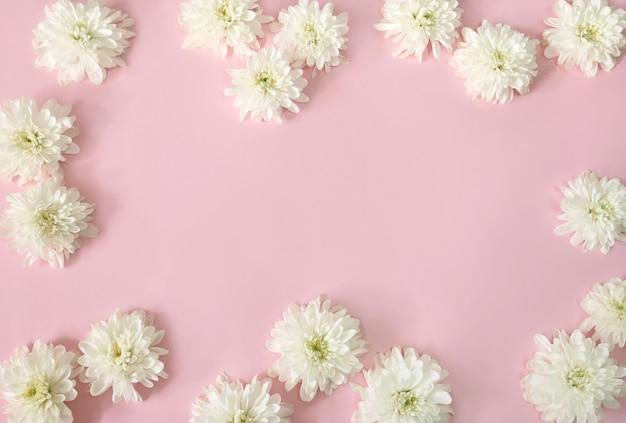 Cornice di fiori margherita bianca