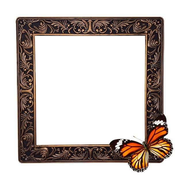 Cornice con farfalla isolata su sfondo bianco