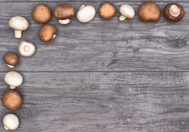 Pagina con i funghi su una priorità bassa di legno e sullo spazio della copia.