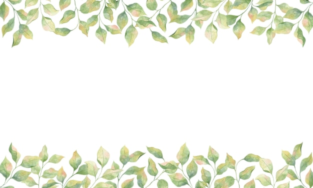Cornice con foglie verdi dell'acquerello, singoli elementi su sfondo bianco, ramoscelli di meli.