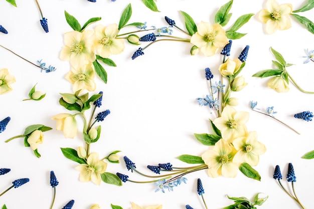 Ghirlanda cornice fatta di fiori di elleboro, fiori di muscari e foglie su sfondo bianco. lay piatto