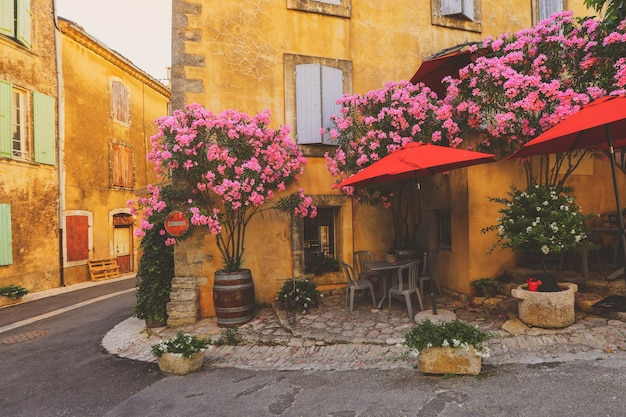 France provence street, antiche case con pianta verde e fiori che sbocciano