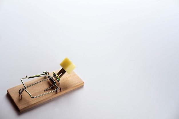 Il formaggio gratis arriva solo in una trappola per topi