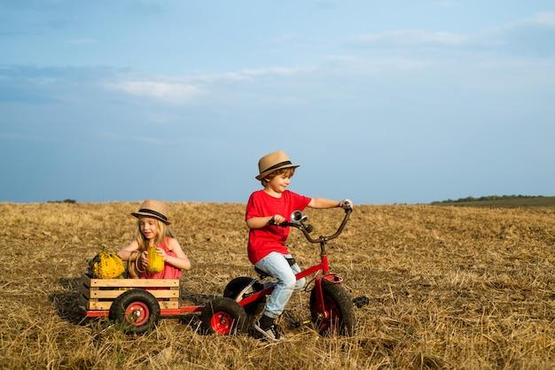 Libertà per i bambini, bambini carini in bici retrò su sfondo blu del cielo sul campo, i bambini amano i bambini che hanno...