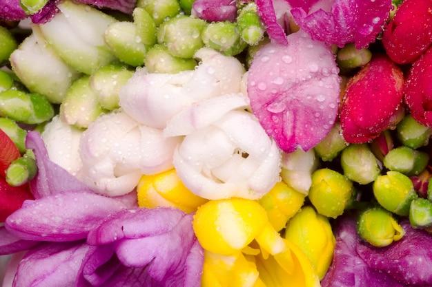 Bouquet di fresia