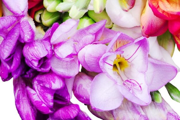 Bouquet colorato di fresia