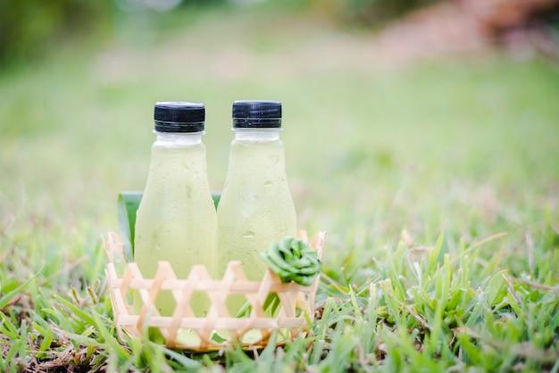 Merce nel carrello fresca del succo di vera dell'aloe su erba verde