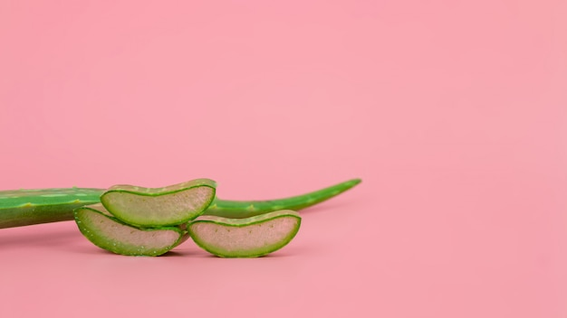 Foglie e fette fresche dell'aloe vera su fondo di rosa pastello per i prodotti di bellezza e di salute.