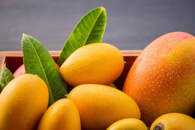 Fresco e bellissimo mango set di frutta in una scatola di legno su uno sfondo di legno scuro, copia spazio (spazio testo), vuoto per il testo