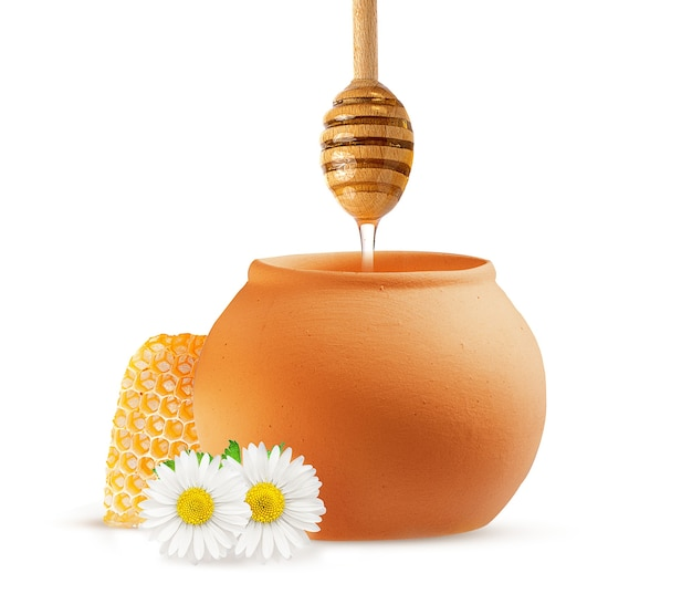Miele d'api fresco in una pentola di terracotta e in favi