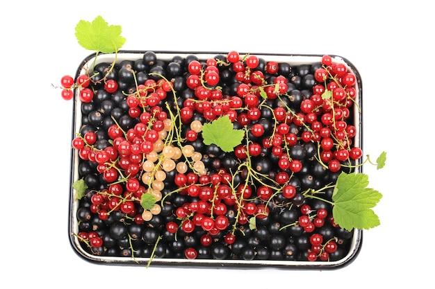 Ribes di bacche fresche utile per il cuore sano mix di ribes rosso ribes nero ribes bianco