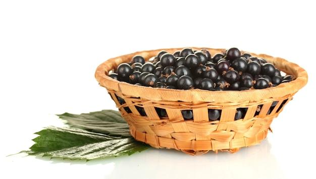 Ribes nero fresco nel cesto di vimini isolato su bianco