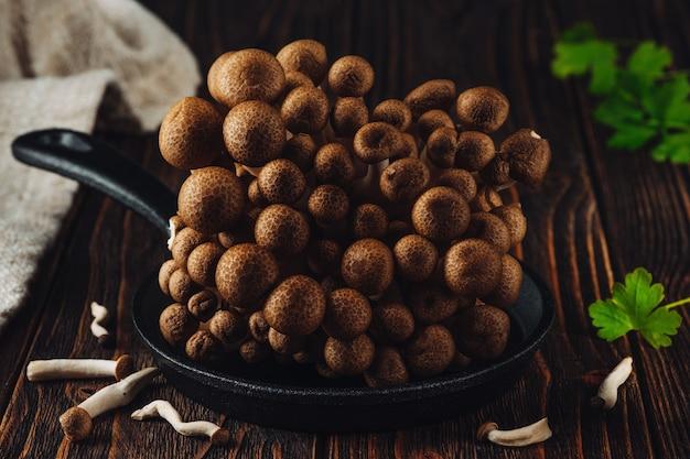 Fungo shimeji marrone fresco su fondo di legno