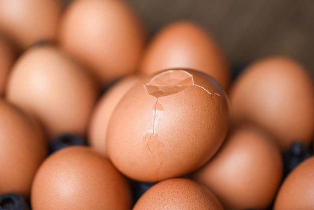 Uova di gallina fresche con uovo rotto