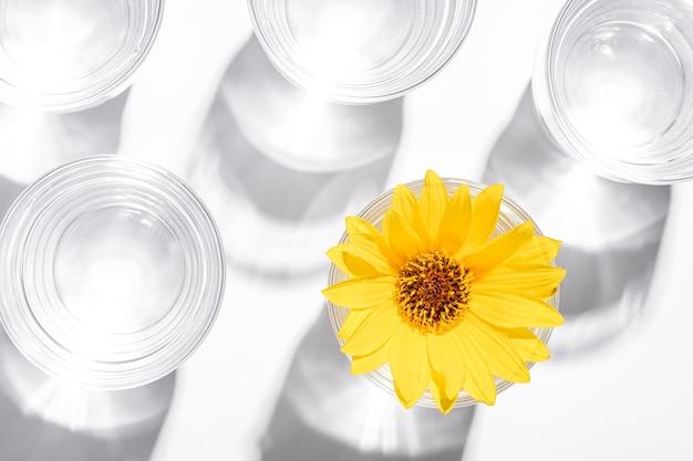 Bere acqua fresca e limpida con fiore giallo in vetro su luce bianca e dura