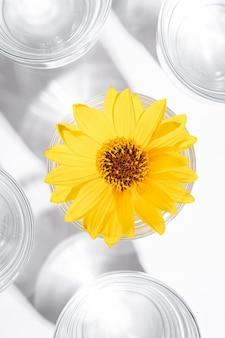 Bevanda fresca acqua limpida con fiore giallo in vetro su superficie bianca, composizione creativa luce dura, vista dall'alto