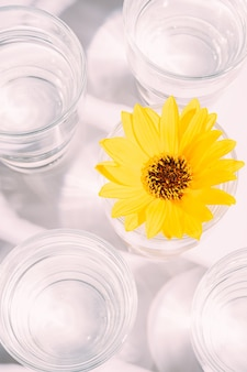 Bere acqua fresca e limpida con fiore giallo in vetro sul tavolo bianco