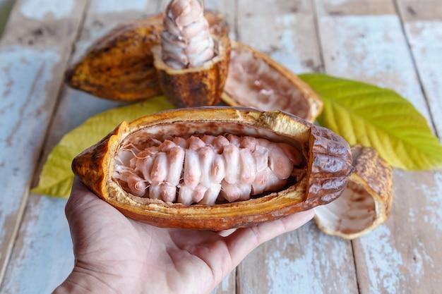 Baccelli di cacao fresco e foglie di cacao su fondo in legno