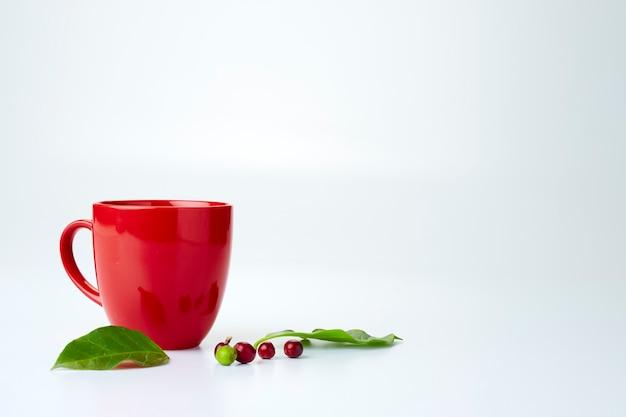 Chicchi di caffè freschi con foglie e una tazza rossa vuota su sfondo bianco