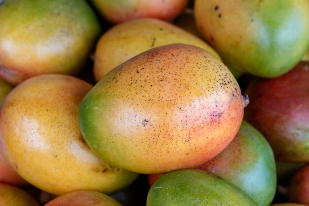 Freschi e colorati manghi tropicali in mostra al mercato degli agricoltori all'aperto a little india, mercato di strada, singapore, primo piano, sfondo di mango
