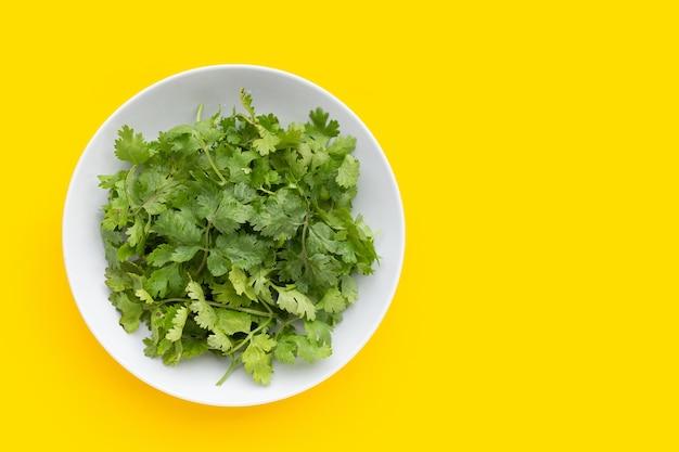 Foglie di coriandolo fresco in piatto bianco su sfondo giallo.