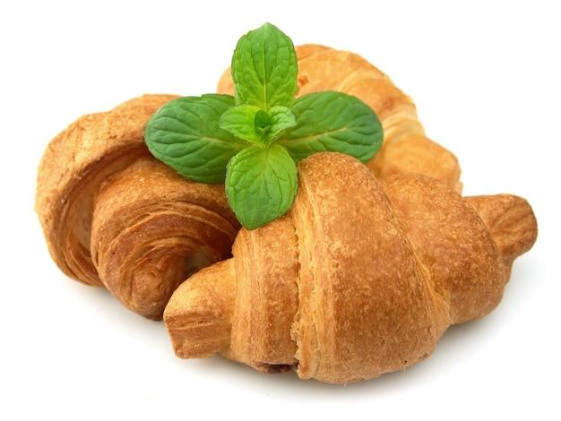 Croissant freschi alla menta su sfondo bianco