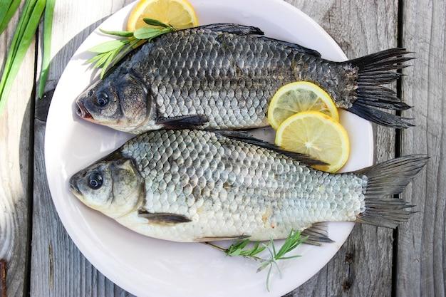 Carpa di pesce fresco su un piatto e sull'erba con cerchi di limone