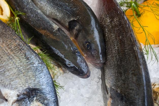 Pesce fresco nel mercato del pesce