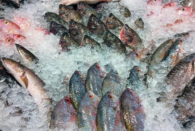 Pesce fresco su ghiaccio al supermercato a yogyakarta, indonesia