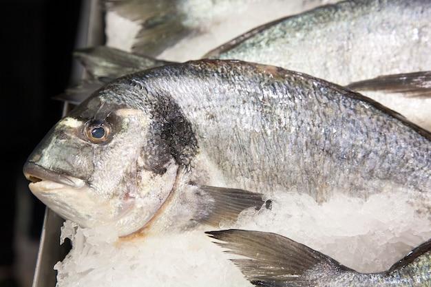 Fresco, pesce, mercato, vendita, conservazione