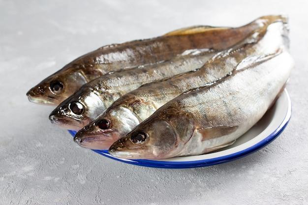 Pesce fresco pronto da cucinare. lucioperca fresco in un piatto