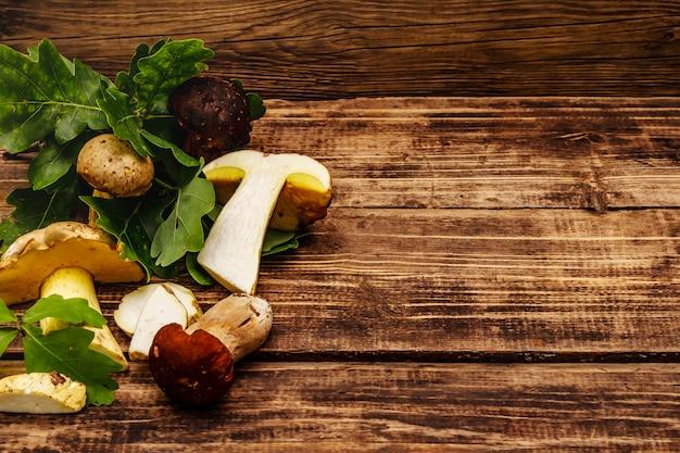 Funghi freschi di bosco. porcini e porcini gourmet, foglie di quercia