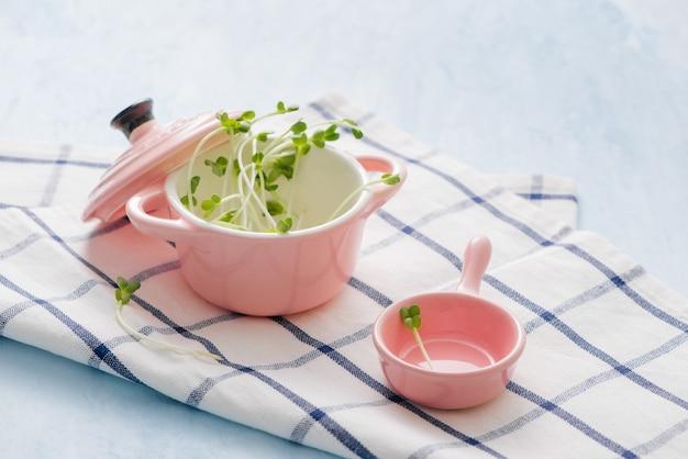Prodotti freschi dell'orto coltivati biologicamente, simbolo di salute e vitamine. microgreens pronti per la cottura. copyspace per il testo