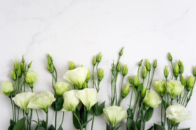 Colori verdi freschi su un tavolo in pietra naturale, sfondo in marmo bianco con spazio per le copie, disposizione piatta, vista dall'alto.